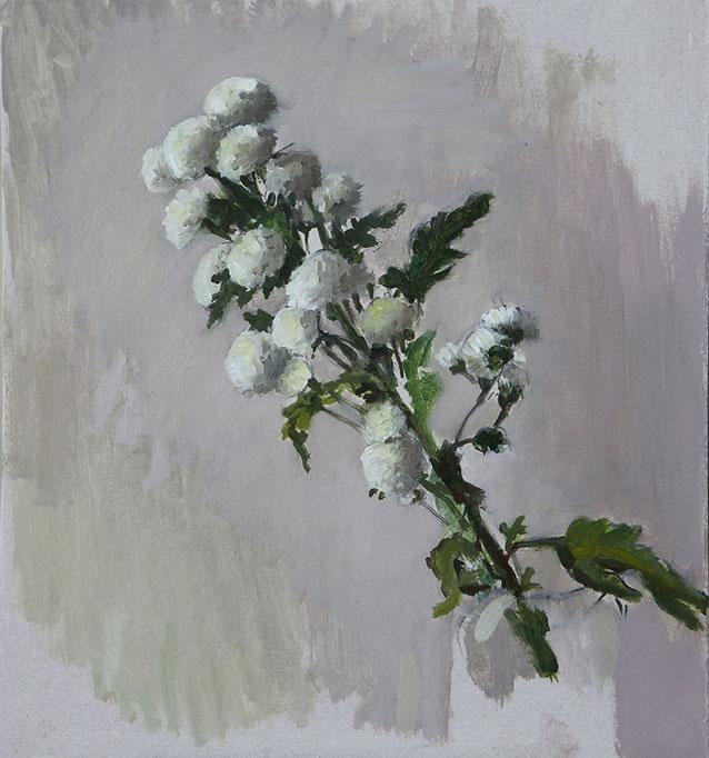 Flores_I